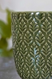 Close-up image of the detail on the Moss Green Fern Leaf Handleless Cup