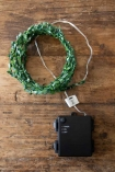 Image of the complete kit with the Green Leafy Decorative Fairy Lights