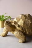 Close-up detail image of the front of the Gold Tortoise Ornament with plant in background and on grey flooring and pale wall background