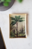 Lifestyle image of Palm Tree Trinket Dish