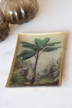 Lifestyle flat image of the Palm Tree Trinket Dish