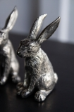 Close-up image of the Quality Silver Salt Rabbit