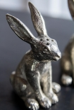 Close-up image of the Quality Silver Pepper Rabbit