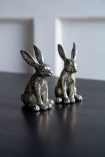 Lifestyle image of both the Quality Silver Salt & Pepper Rabbits