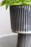 Close-up image of the striped detail on the Striped Goblet Pot