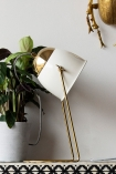 detail image of White & Brass Lola Desk Lamp with head swivelled round and plant with wooden ornaments on white wall background