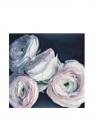 "cutout Image of the Unframed Art Print by Amy Carter ""Amour"" on a white background pale pink roses on navy blue background"