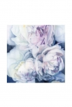 "Image of the Unframed Art Print by Amy Carter ""Fall From Grace"" on a white background pink white roses on navy background cutout image"