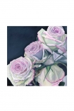 "Image of the Unframed Art Print by Amy Carter ""In The Dark"" on a white background pink roses on navy background cutout image"