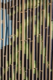Close-up of the bamboo on the Tropical Design Bamboo Door Curtain