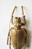 Close-up detail image of the Large Gold Stag Beetle Wall Decoration hanging on a white wall