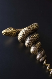 Close-up detail lifestyle image of the Antique Gold Snake Corkscrew on dark blue surface background