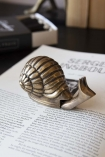 lifestyle image of Brass Effect Snail Tape Measure on open book with tape measure closed