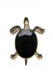 cutout image of Brass & Black Enamel Turtle Trinket Dish on white background