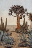 Close-up detail image of the Desert Landscape Wallpaper Mural - Meiji Maca