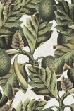 detail imageof Mind The Gap Exotic Fruit I Wallpaper green leaves and oval shaped fruit on pale background repeated pattern