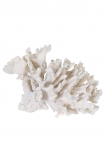 Image of the Faux Pure White Coral Ornament on a white background