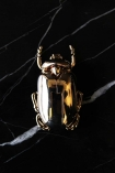 lifestyle image of Gold Insect Corkscrew Bottle Opener on black marble effect table