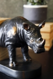 detail image of head on Rhino Bookends with plant in background on black table