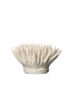 cutout Image of the White Stoneware Urchin Coral Ornament on a white background