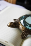 detail image of Turtle Magnifying Glass on open book