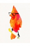 cutout image of Unframed Punk Bird Fine Art Print on white background