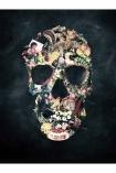 cutout image of Unframed Vintage Skull Fine Art Print on white background