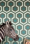 lifestyle image of Cole & Son Contemporary Restyled - Hicks' Grand Wallpaper - Green 95/6034 - ROLL with zebra head ornament