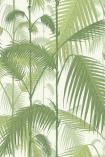 detail image of Cole & Son Contemporary Restyled - Palm Jungle Wallpaper - Lime Green 95/1001 - SAMPLE green toned palm leaves on white background repeated pattern