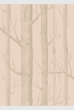detail image of Cole & Son Whimsical Collection - Woods Wallpaper - Peach 103/5024 - SAMPLE gold toned tree trunks on peach background