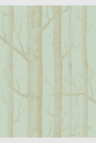 detail image of Cole & Son Whimsical Collection - Woods Wallpaper - Green 103/5023 - SAMPLE gold toned tree trunks on pale green background