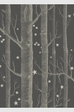 detail image of Cole & Son Whimsical Collection - Colour Woods & Stars Wallpaper - Charcoal 103/11053 - SAMPLE pale tree trunks and small white stars on charcoal background
