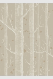 detail image of Cole & Son Whimsical Collection - Natural Woods & Stars Wallpaper - Linen 103/11047 - SAMPLE white tree trunks and small gold stars on nude background