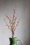 Image of one Orange Faux Wild Berries Stem in a vase
