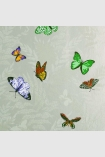 square detail image of Nina Campbell Farfalla Wallpaper - Natural NCW4010-03 - ROLL butterflies on natural background