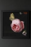 Image of the Framed Dark Rose Art Print