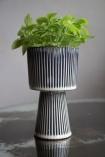 Image of the Medium Striped Goblet Pot