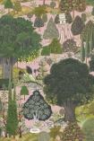Mind The Gap Jardin Sauvage Wallpaper - WP20443 - SAMPLE
