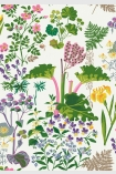 detail image of BorasTapeter Scandinavian Designers II Wallpaper - Rabarber - White 1792 - ROLL bright coloured flowers and pink rhubarb with green leaves on white background repeated pattern