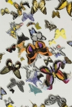 detail image of Christian Lacroix Butterfly Parade Wallpaper - Multicolour PCL008/01 - ROLL coloured butterflies on pale background repeated pattern