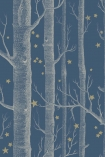 detail image of Cole & Son Whimsical Collection - Colour Woods & Stars Wallpaper - Midnight 103/11052 - ROLL white tree trunks and small gold stars on blue background