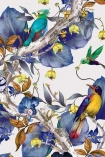 detail image of Osborne & Little Rain Forest Wallpaper - Blue W7026-02 - ROLL blue leaves on brown branch with coloured birds on white background repeated pattern