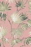 detail image of the Va Va Frome Powder Pink Wallpaper by Pearl Lowe green toned tropical leaves on pink background