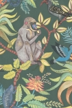 detail image of Cole & Son - The Ardmore Collection - Savuti - 190/1006 grey monkey and coloured bird on branches with green leaves on dark green background