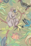 detail image of Cole & Son - The Ardmore Collection - Savuti - 190/1005 grey monkey and coloured bird on branches with green leaves on khaki green background