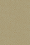 cutout image of Cole & Son - The Ardmore Collection - Senzo - 190/6029 gold spots on olive background
