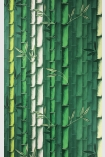 detail image of Osborne & Little Bamboo Wallpaper - Green W7025-01 - ROLL different green toned bamboo stems repeated pattern