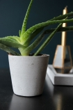 lifestyle image of Concrete Effect Plant Pot with plant in and candle on black table with dark wall background
