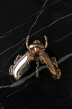 lifestyle image of Gold Insect Corkscrew Bottle Opener open on black marble effect surface