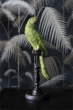 Green Tropical Parrot On A Perch with dark palm tree wallpaper background lifestyle image
